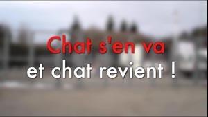 Chat s'en Va et Chat Revient (5m)